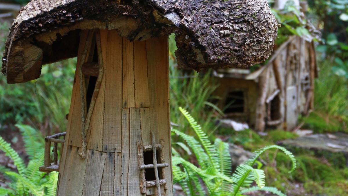 Häuser aus Pilzen; Foto: Unsplash